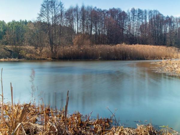 Річка Конопелька на світлині фотографа Володимира Ковалюка