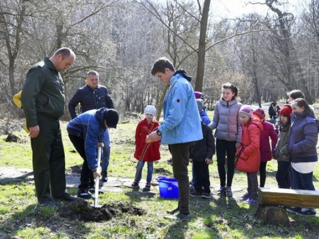 Вихованці рожищенського притулку посадили калину у Воротневі