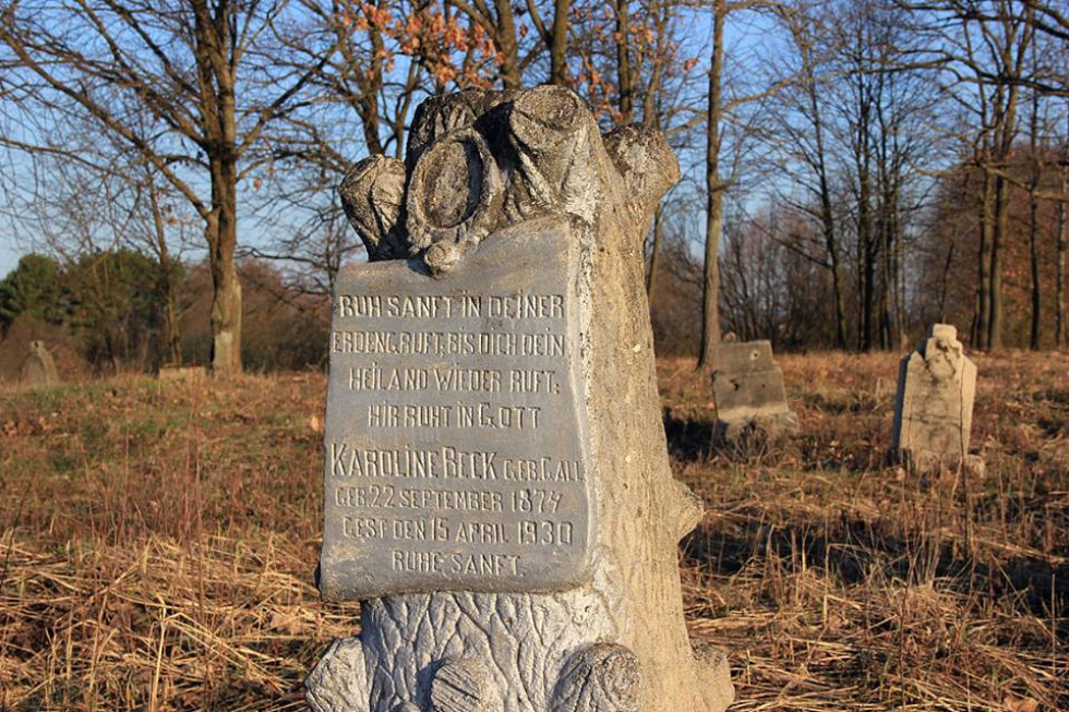 Старе кладовище німецьких колоністів в Олешковичах