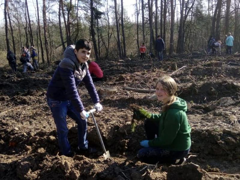 Школярі із села Копачівка садять ліс