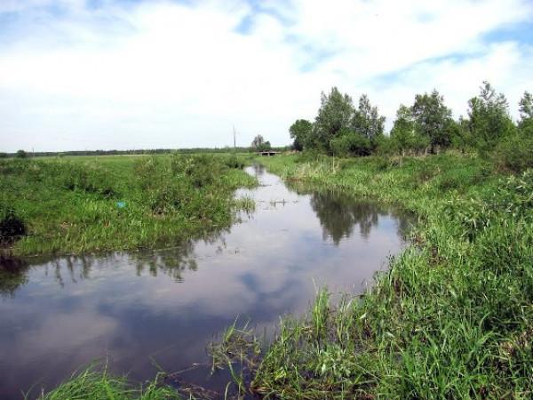 Річка Лютиця