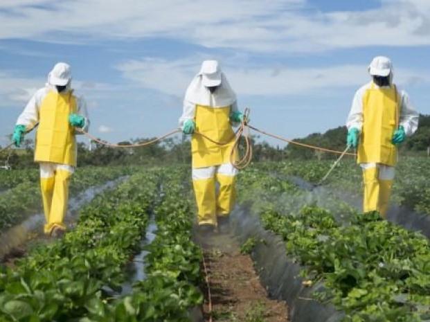 Волинянам дали рекомендації щодо заходів безпеки при роботі з пестицидами
