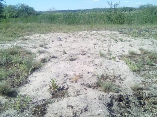 Знайшли поховання 1916 р. невідомих воїнів у селі Линівка