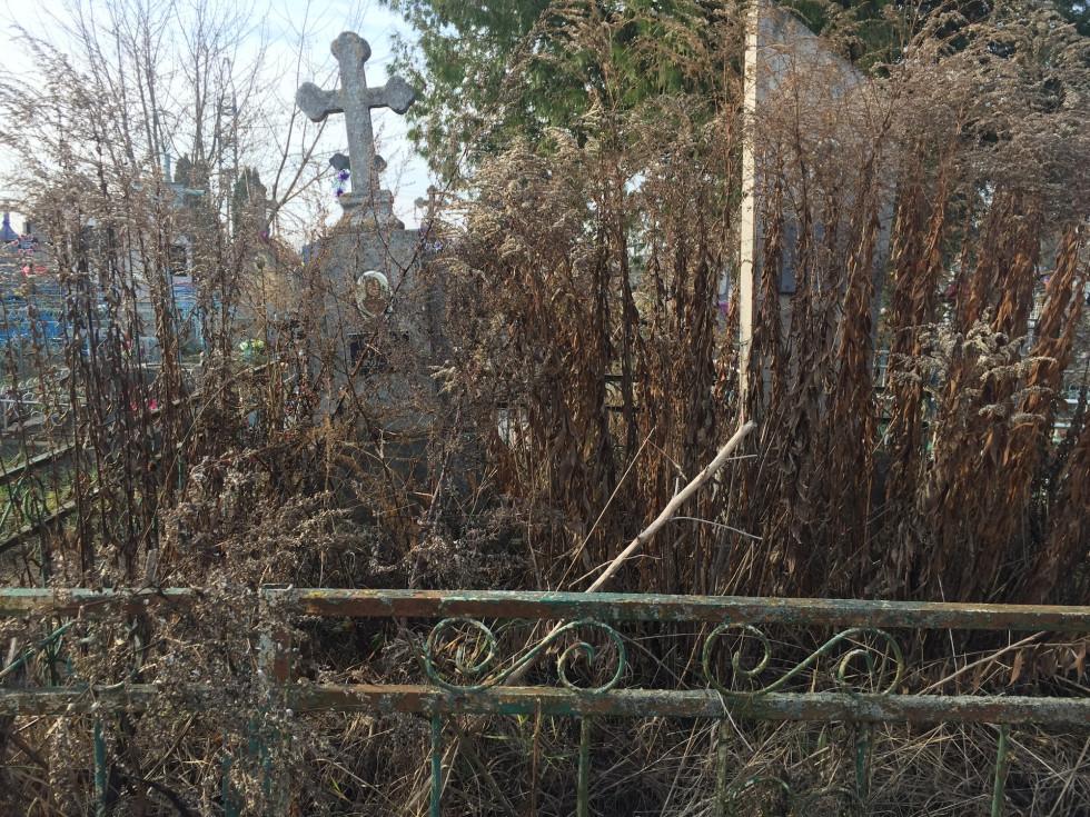 Безлад на могилах