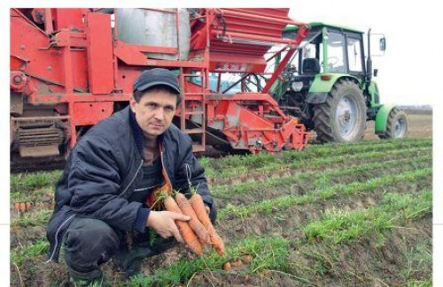 Руслан Хомич з урожаєм моркви